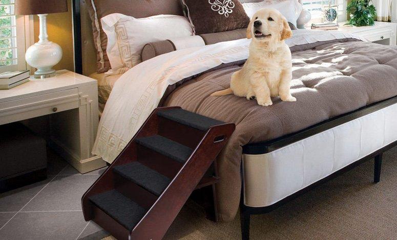 Escalera de madera para perro animal planet sears com mx - Escaleras para perros ...