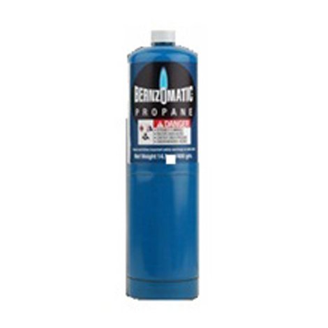 Tanque desechable 400 gr weber mod 60006 sears com mx for Tanque de gas butano