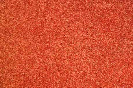 Alfombra tuxon sears com mx me entiende for Valor alfombra